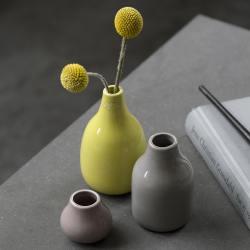 minivasen-set, botanica