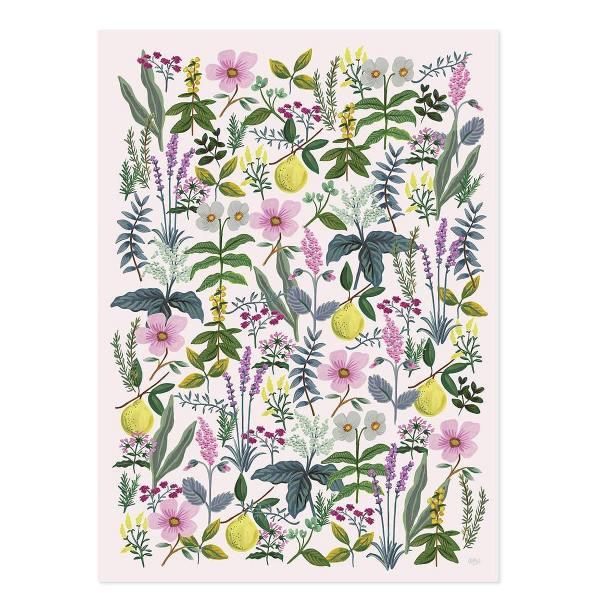 rifle paper co geschenkpapiere floral wildblumen blueten kraeuter zitronen herb garden wunderschoen-gemacht