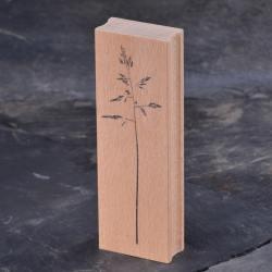 stempel jazz rispengras gras graeser wunderschoen-gemacht