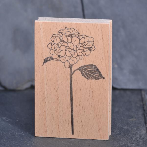 stempel jazz hortensienblueten wunderschoen-gemacht
