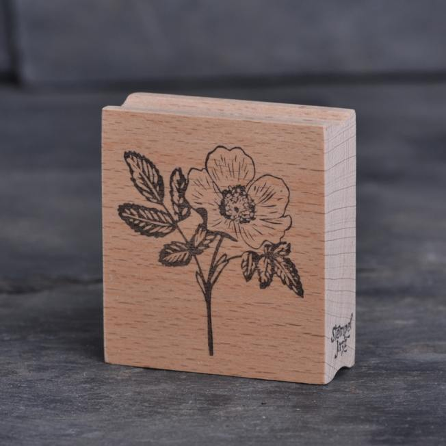 stempel jazz rosenblueten wunderschoen-gemacht