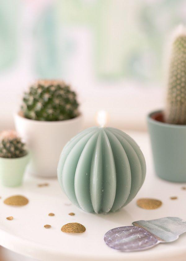 kaktus-party-kakteen-kerzen-wunderschoen-gemacht