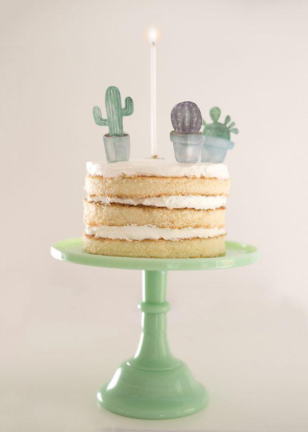 kaktus-party-torte-wunderschoen-gemacht