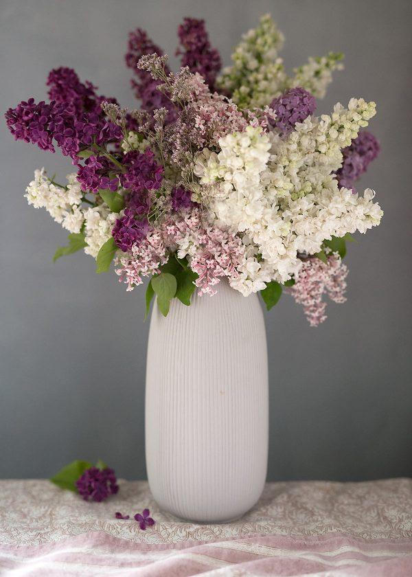 storefactory-vase-aby-rillen-fliederstrauss-wunderschoen-gemacht