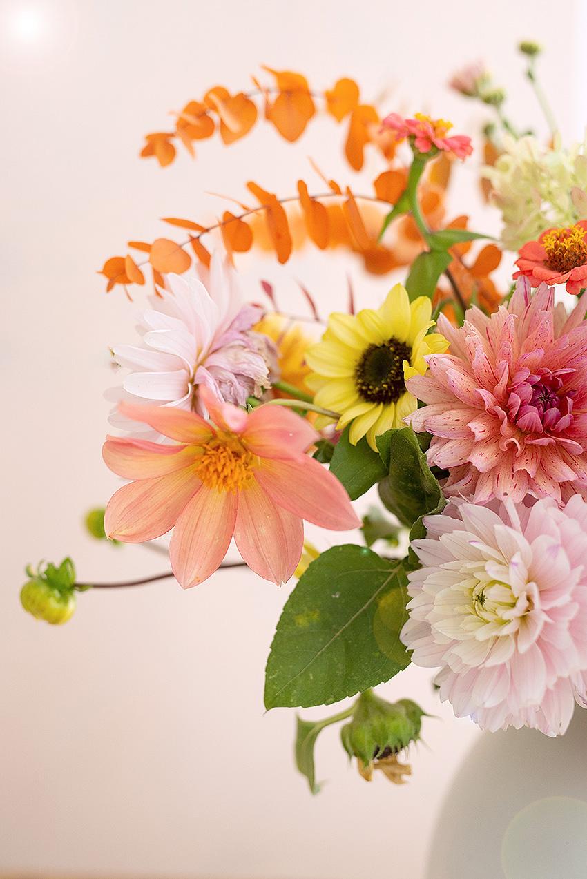 herbstblumen-dahlien-sonnenblumen-wunderschoen-gemacht