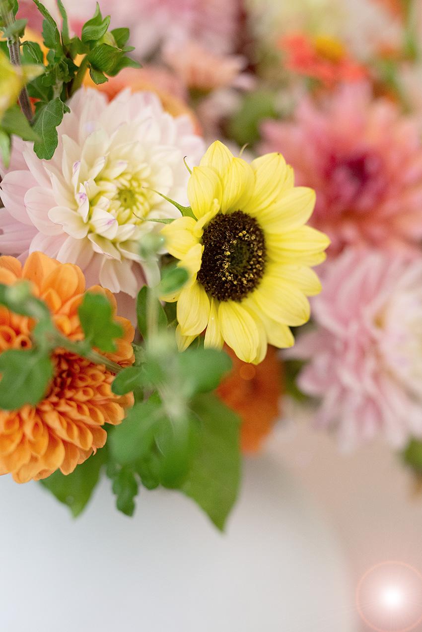 herbststrauss-herbstblumen-sonnenblumen-wunderschoen-gemacht